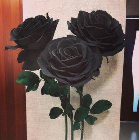 Интерьерные Розы/Ростовые цветы