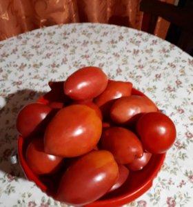 Продам помидорки