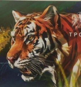 Карта тройка амурский тигр