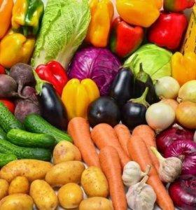 Овощи на корм животным