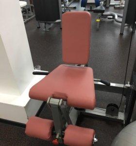 Грузоблочный тренажер Body-Solid, разгибание ног.