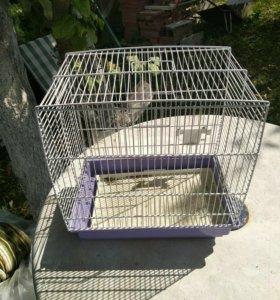 Клетка для попугая хомячка