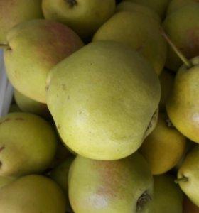 Груша и яблоки