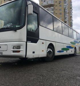 Автобус Man A01