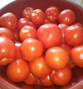 Засолочные помидоры