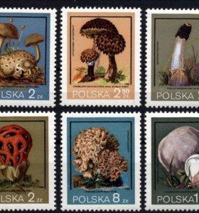 Продажа почтовых марок разных тематик.