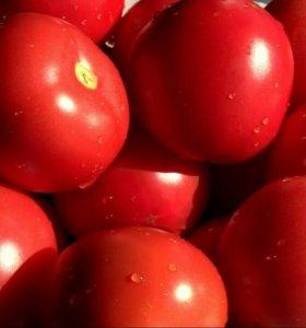 Красные помидоры!