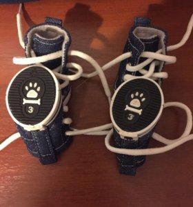 Кеды для собаки