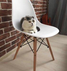 Новые дизайнерские стулья