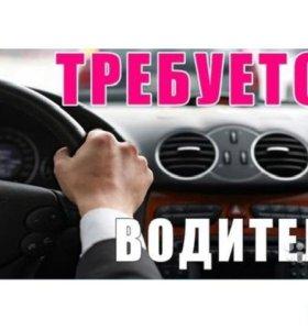 водител