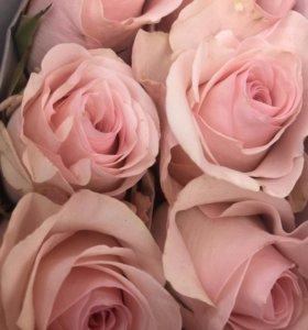 Акция! Розы от 30 рублей