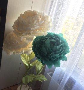 Ростовые цветы