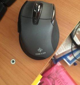 Без шумная мышь DEXP