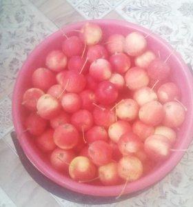 Продам яблоки садовые.
