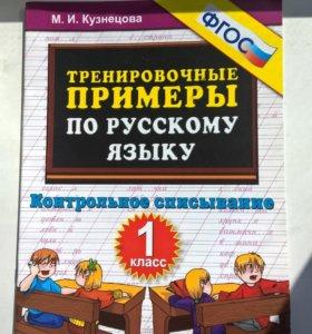 Тренировочные примеры по русскому языку. 1 класс.