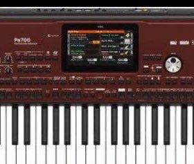 Музыкальный инструмент KORG PA-700