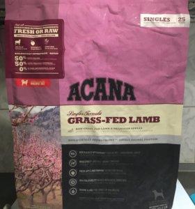 Сухой корм для собак Acana и Orijen 2/6 кг
