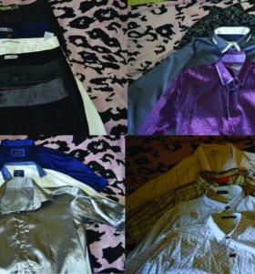 рубашки,брюки,пиджаки,ветровки,куртки,пальто,парка