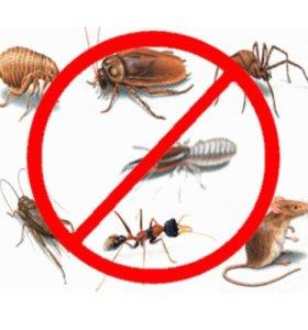 Уничтожение тараканов, клопов и др.