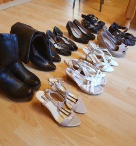Женская обувь (туфли, сапоги, босоножки)