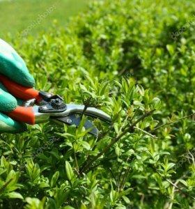 Обрезка кустов и садовых насаждений.
