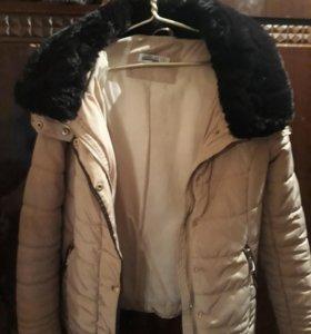 Куртка межсезонье
