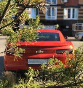 Прокат/аренда Chevrolet Camaro V