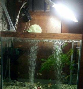 Аквариум с оборудованием, грунтом, рыбками