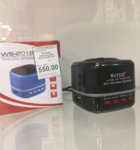WSTER WS-201