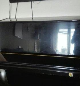Фортепиано «Элегия»
