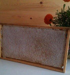Мёд.Рамка