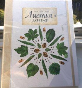 Книга-бестселлер «Мой гербарий. Листья деревьев»
