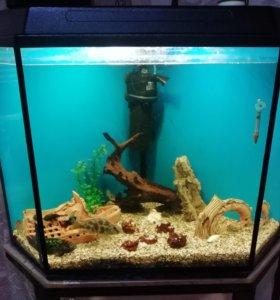 Продам аквариум на 180 литров