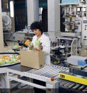 Оператор линии на пищевое производство
