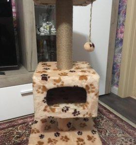 Новый комплекс для кота