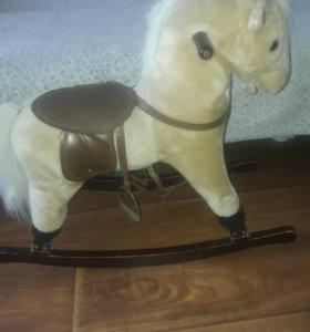 Конь музыкальный