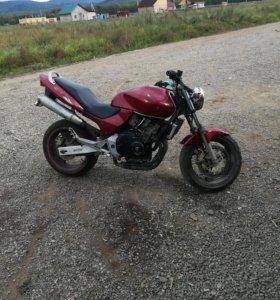 Honda cb 250 hornet
