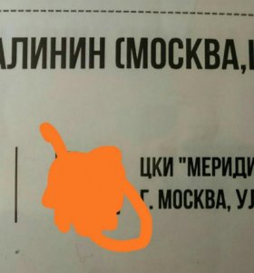 Билет на концерт Александра Малинина