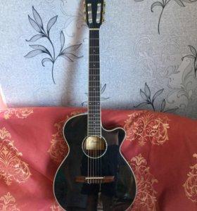 Гитара Ibanez AEG10NII