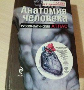 Русско- латинский атлас анатомии человека