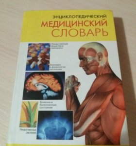 Медицинский словарь и анатомия нервной системы
