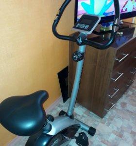 Fitness236