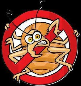 Дезинсекция. Уничтожение любых насекомых.