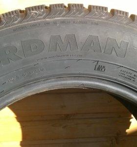 Nordman-4