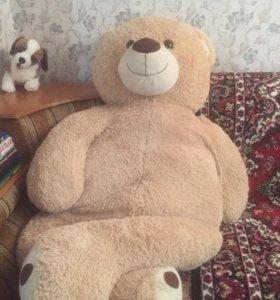 Медведь 3 метра