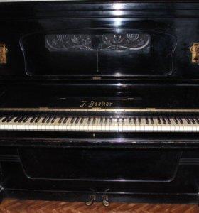 Пианино J, Becker