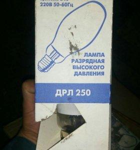 Лампы дрл250