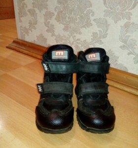 Продам ботиночки MINIMEN