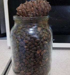 Кадровый орех