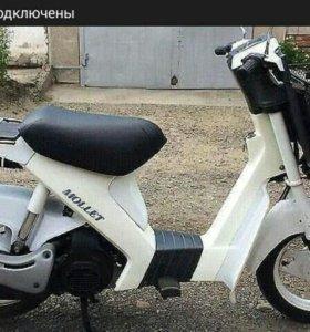 Suzuki Moller